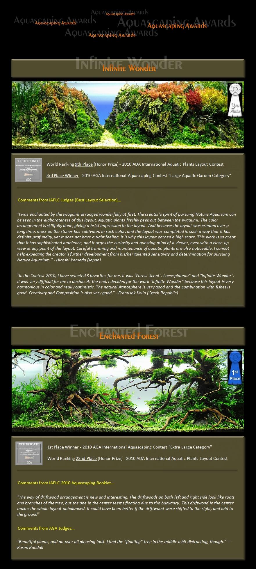 Bubbles Aquarium Aquascapes Award Winning Layouts